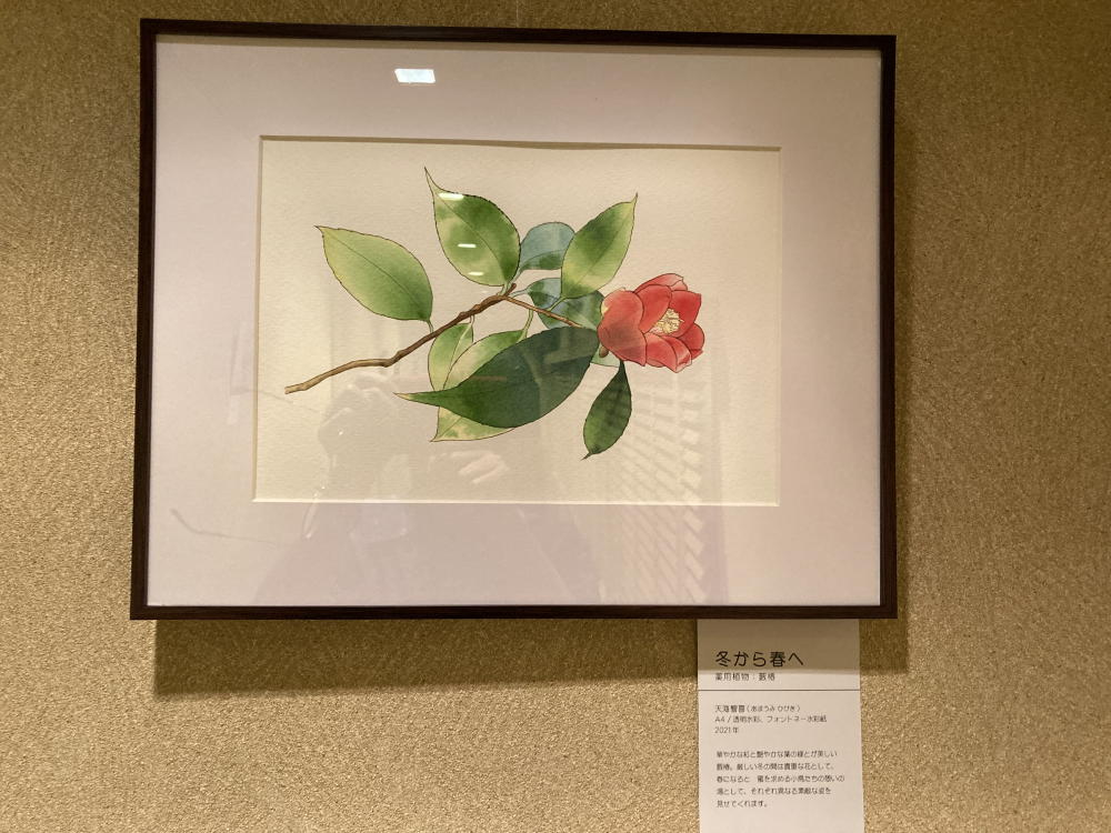 三宅漢方医院廊下の絵 冬から春へ